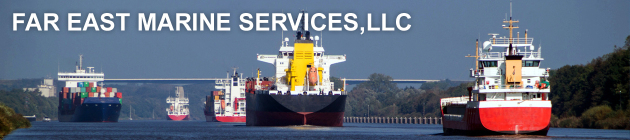 Far East Marine Services, LLC